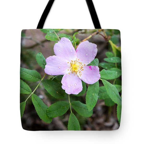 Wild Gentian Tote Bag