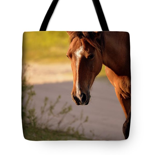 Tote Bag featuring the photograph Wild Shadows by Amanda Vouglas