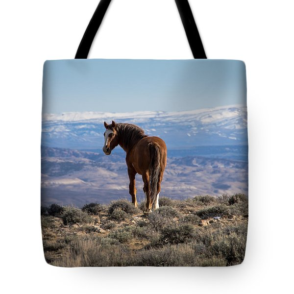 Wild Stallion Of Sand Wash Basin Tote Bag