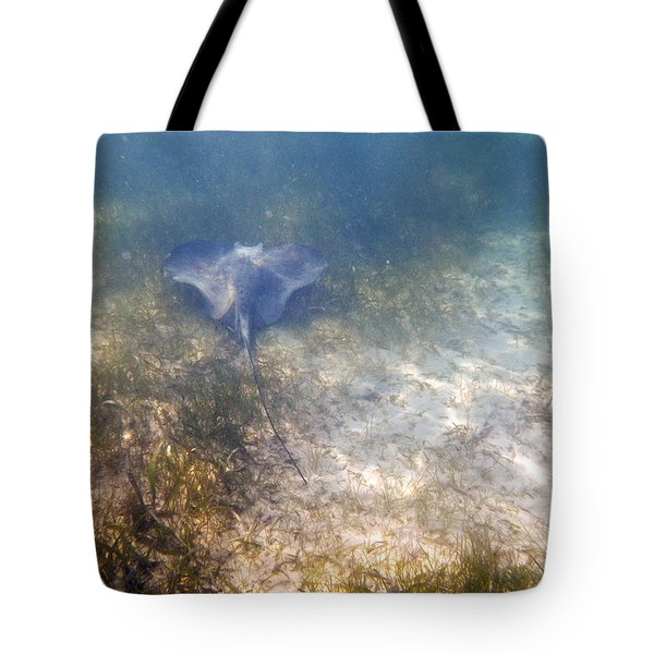 Tote Bag featuring the photograph Wild Sting Ray by Eti Reid