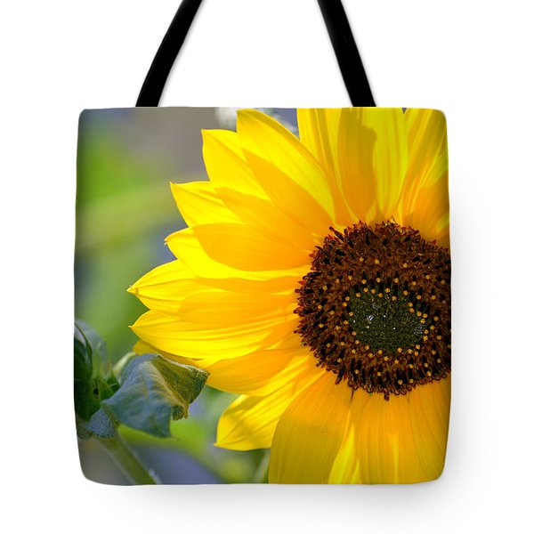 Tote Bag featuring the photograph Wild Sunflower by Nadalyn Larsen