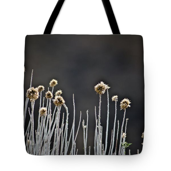 Wild Things 1 Tote Bag