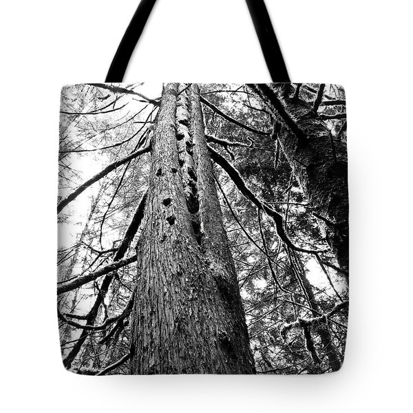 Wild Things Hotel Tote Bag by Adria Trail