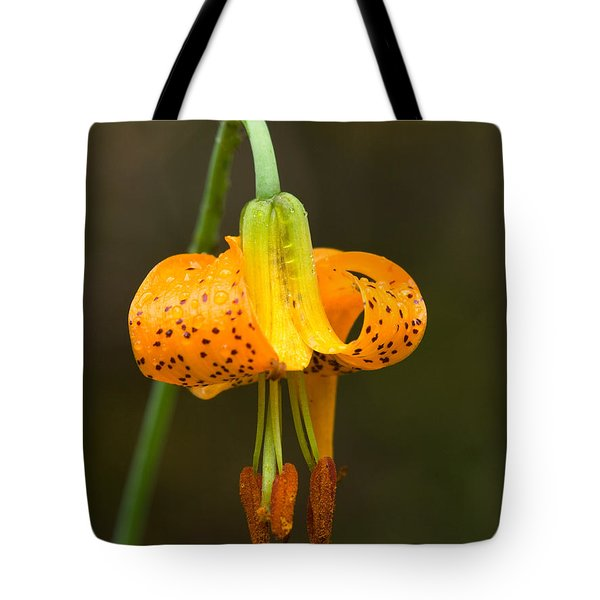 Wild Tiger Lily Tote Bag