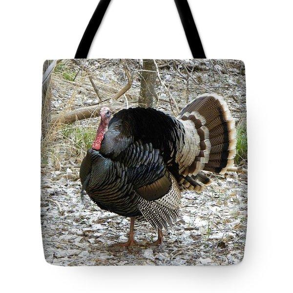 Wild Turkey Mnt Zion Ut Tote Bag