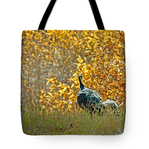 Wild Turkeys And Fall Colors Tote Bag by Robert Bales
