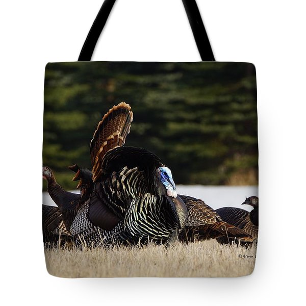 Tote Bag featuring the photograph Wild Turkeys by Steven Clipperton