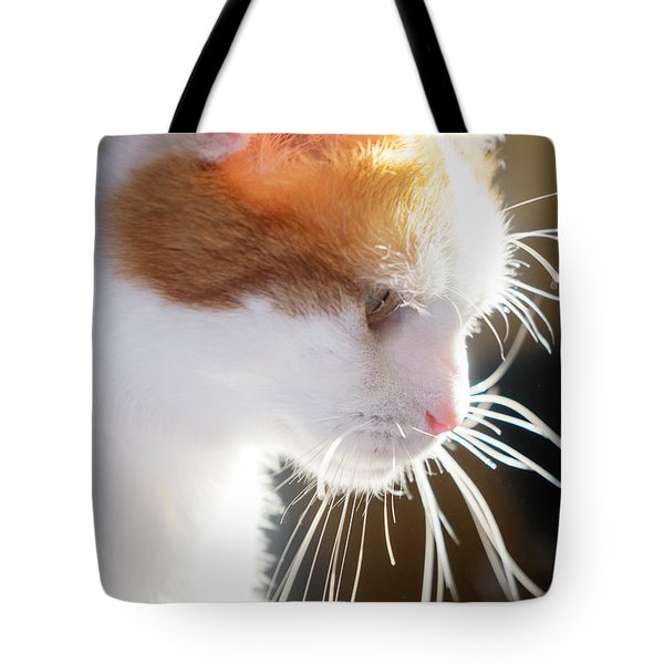 Wild Whiskers Tote Bag