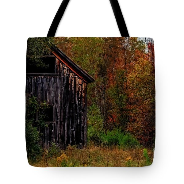 Wilderness Barn Tote Bag by Brenda Giasson