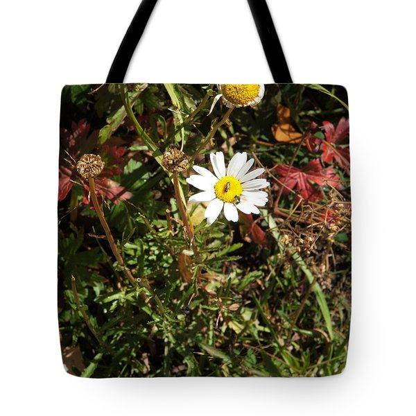 Wildflower @ Kit Carson Tote Bag