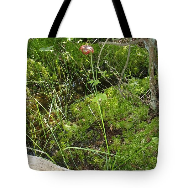 Tote Bag featuring the photograph Wildflower 1 by Robert Nickologianis