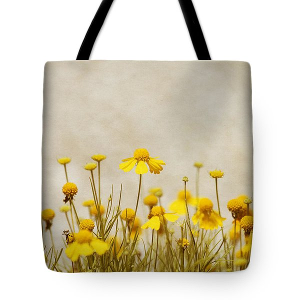 Wildflower Daisies Tote Bag by Kim Hojnacki