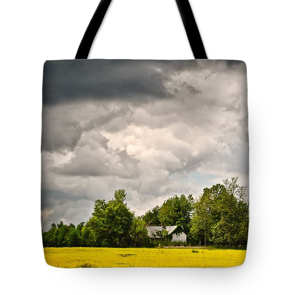 Tote Bag featuring the photograph Wildflower Field Farmhouse 2 by Greg Jackson