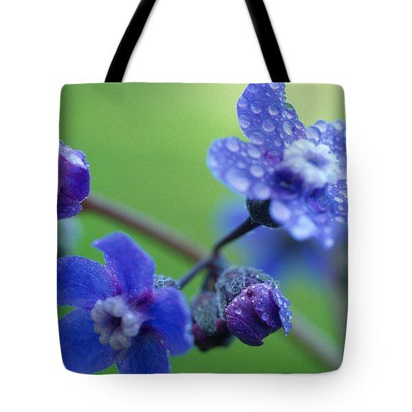 Wildflower In The Rain Tote Bag by Kathy Yates