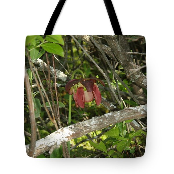 Tote Bag featuring the photograph Wildflower by Robert Nickologianis