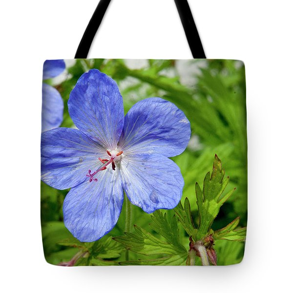 Tote Bag featuring the photograph Wildflower by Rod Wiens