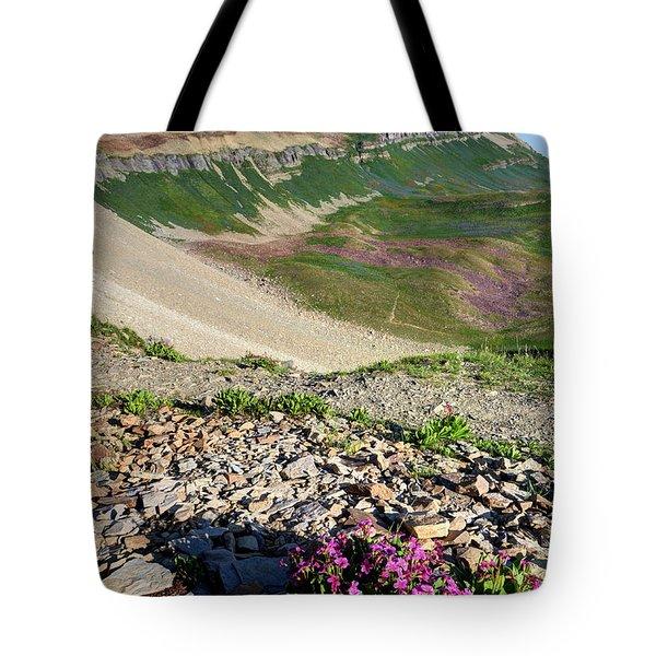 Wildflowers Above Timpanogos Basin At Sunrise Tote Bag
