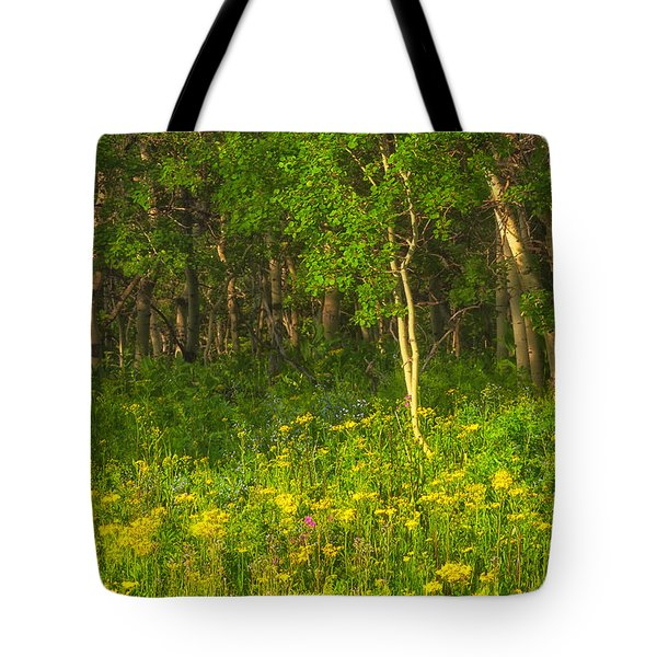 Tote Bag featuring the photograph Wildflowers Glacier National Park Montana by Ram Vasudev