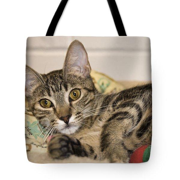 Wilkie Tote Bag