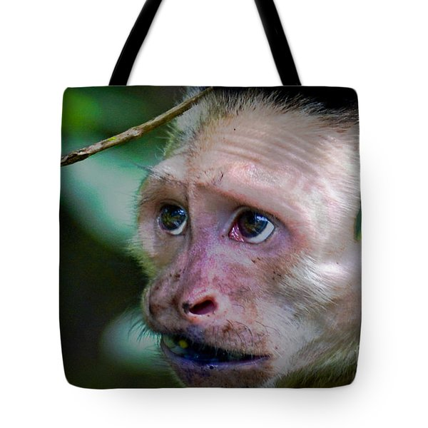 Will Work For Food Tote Bag by Gary Keesler