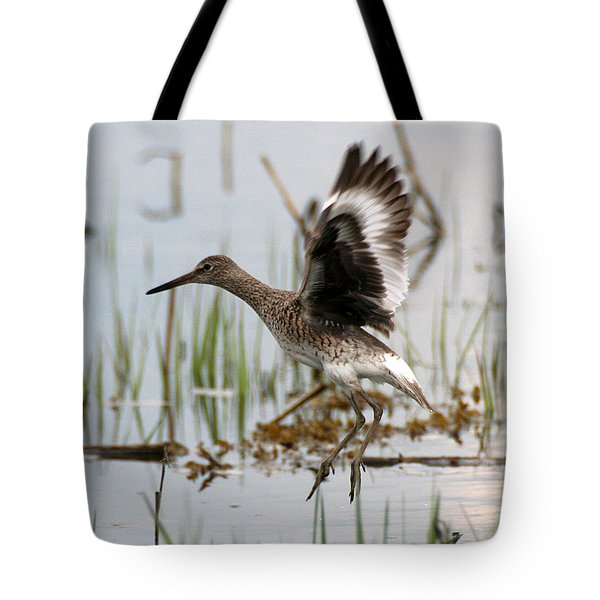 Willet Taking Flight Tote Bag