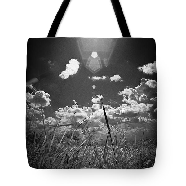 Willow Tote Bag by Bradley R Youngberg