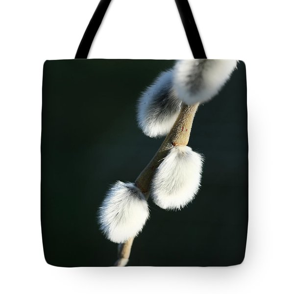 Tote Bag featuring the photograph Willow On Black by Liz  Alderdice