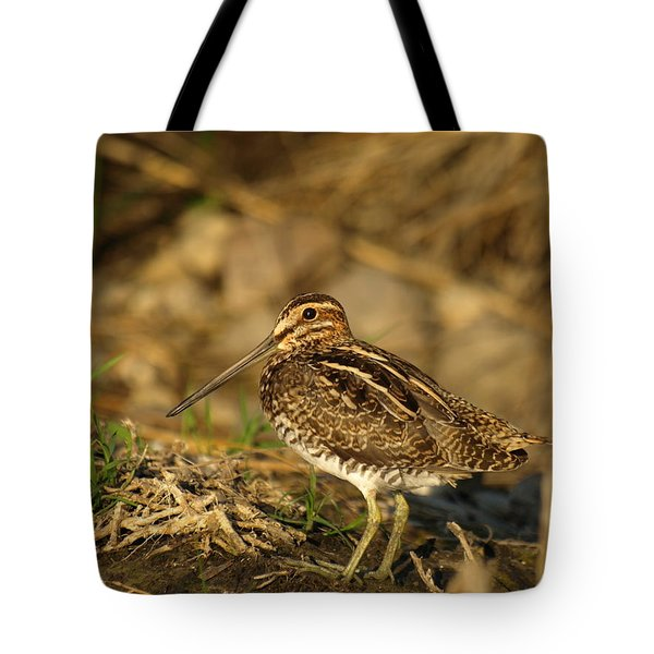 Wilson's Snipe Tote Bag by James Peterson