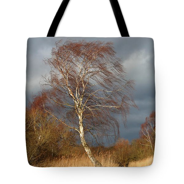 Wind Direction Tote Bag