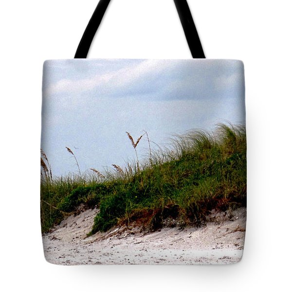 Wind In The Seagrass Tote Bag by Ian  MacDonald