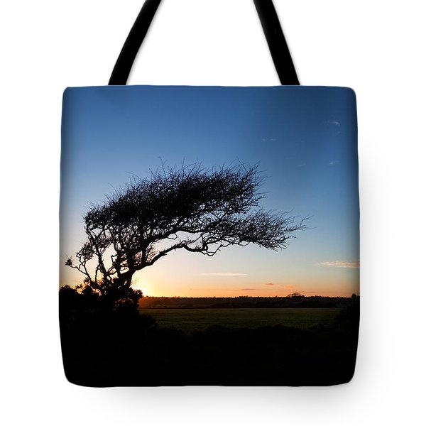 Wind Sculptured Hawthorn Tree, The Tote Bag