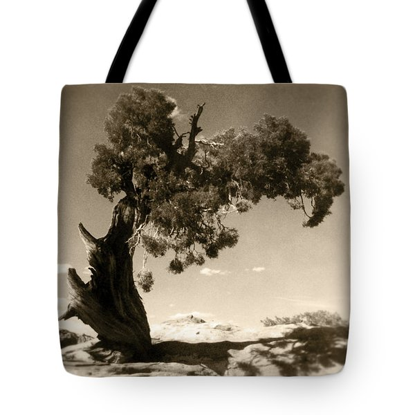 Wind Swept Tree Tote Bag