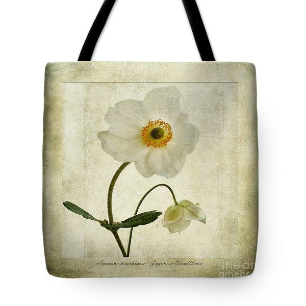 Windflowers Tote Bag by John Edwards