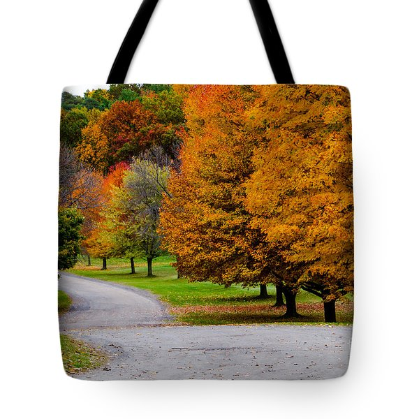 Tote Bag featuring the photograph Winding Road by William Norton