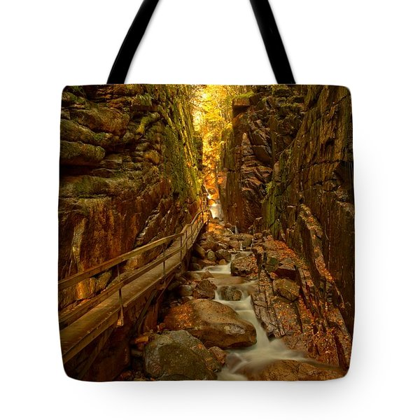 Winding Through Flume Gorge Tote Bag