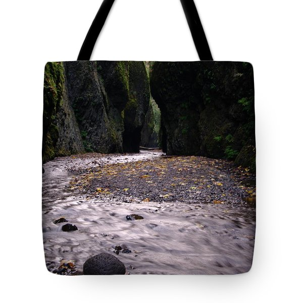 Winding Through Oneonta  Gorge Tote Bag by Jeff Swan
