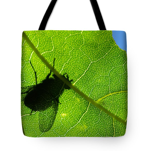 Window Of Opportunities - Featured 3 Tote Bag by Alexander Senin