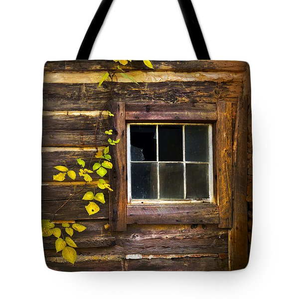 Window To The Soul Tote Bag by Debra and Dave Vanderlaan