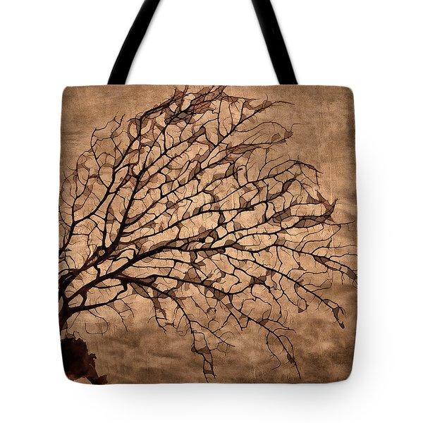 Windowpane Coral Tote Bag