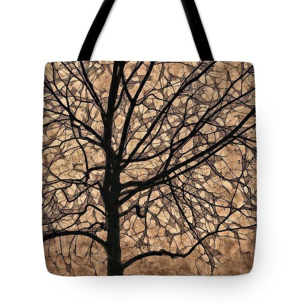 Windowpane Tree In Autumn Tote Bag