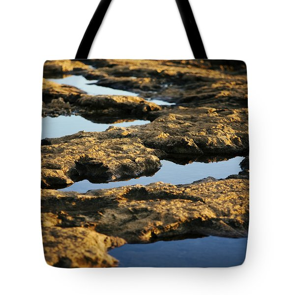 Tote Bag featuring the photograph Windows by Charmian Vistaunet