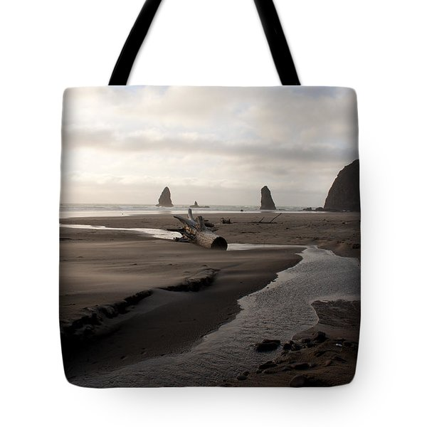 Windswept Tote Bag by John Daly