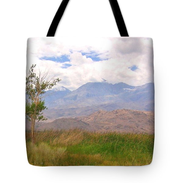 Tote Bag featuring the photograph Windswept by Marilyn Diaz