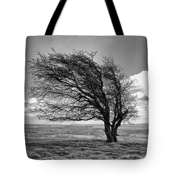 Windswept Tree On Knapp Hill Tote Bag