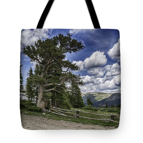 Tote Bag featuring the photograph Windy Ancients by Bitter Buffalo Photography