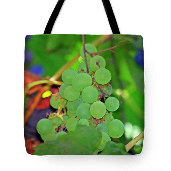 Wine Beginnings Tote Bag