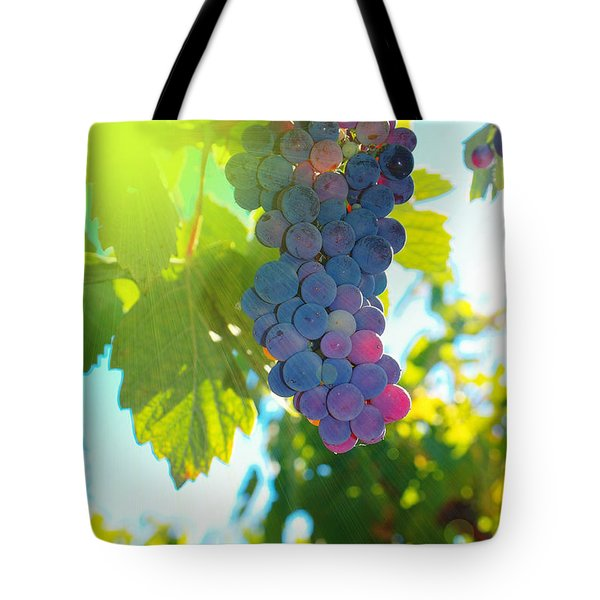 Wine Grapes  Tote Bag by Jeff Swan