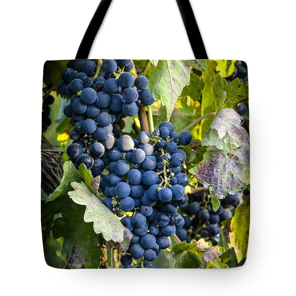 Wine Grapes Tote Bag