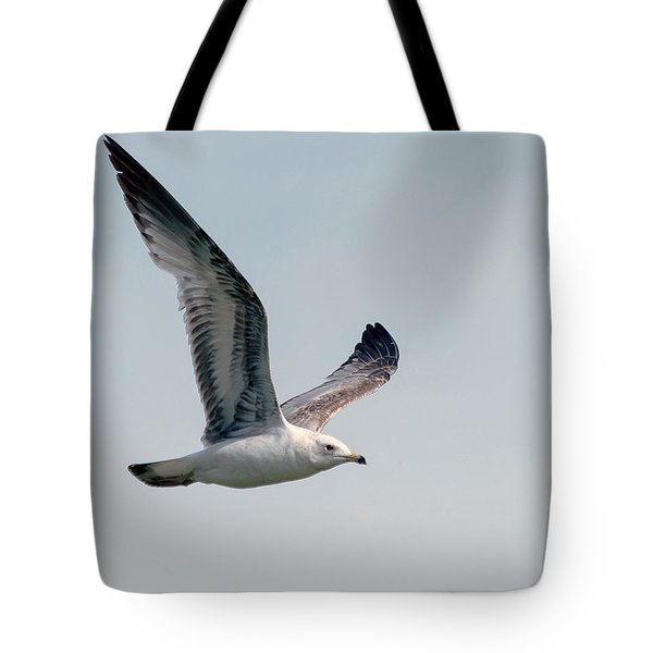 Wing Span Tote Bag by Stephen  Johnson
