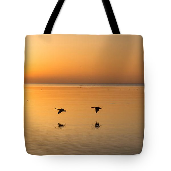 Tote Bag featuring the photograph Wings At Sunrise by Georgia Mizuleva